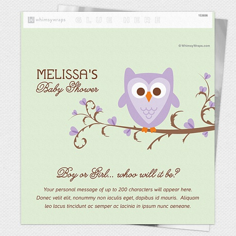 Owl Baby Diy Baby Shower Favors Personalized Chocolate